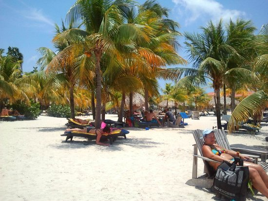 Lions Dive & Beach Resort Curacao : Stand