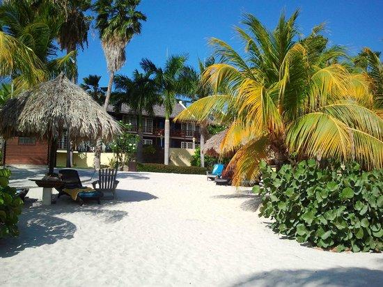 Lions Dive & Beach Resort Curacao: Strand