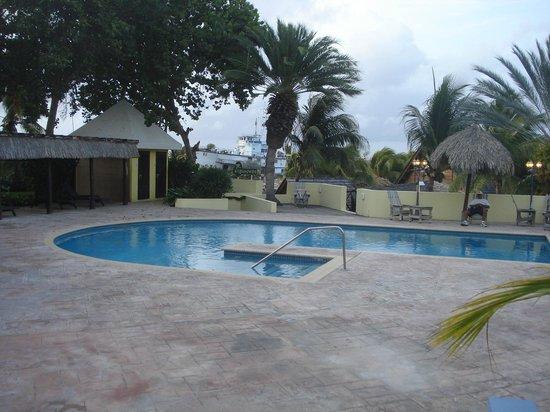 Lions Dive & Beach Resort Curacao: Zwembad