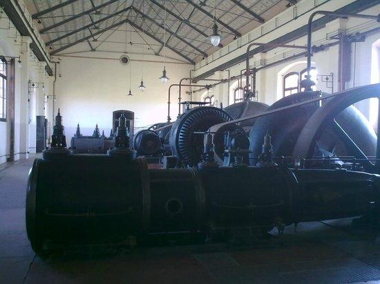 Museo Regionale della bonifica Ca' Vendramin