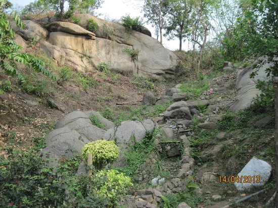 Brahmaputra Jungle Resort: Mountain