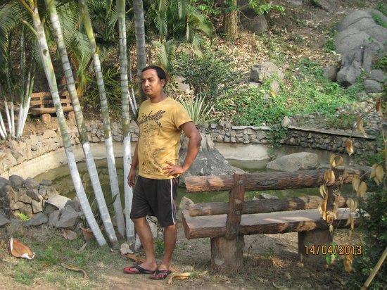 Brahmaputra Jungle Resort: Site