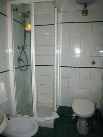 Hotel Laurentia: Ванная комната совмещенная
