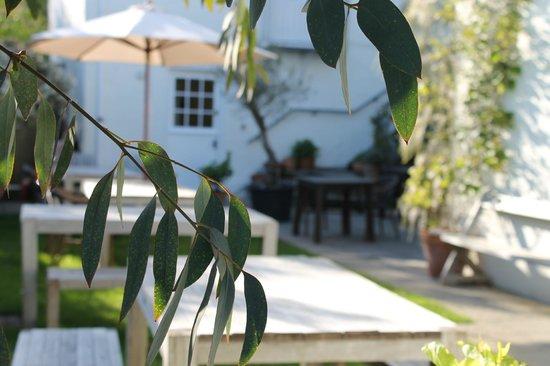 South Cafe: Garden
