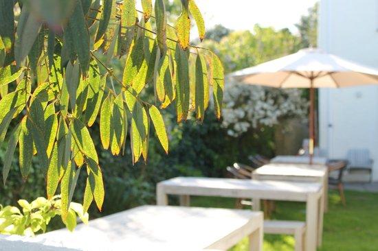 South Cafe: Sunny Garden