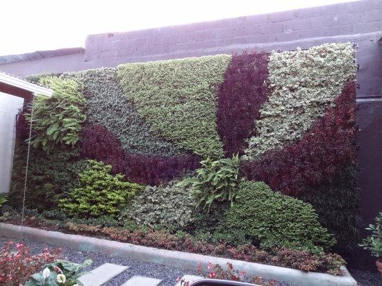Wokco: Plant Mural (Daytime)