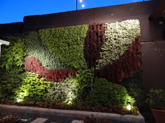 Wokco: Plant Mural (NIghttime)