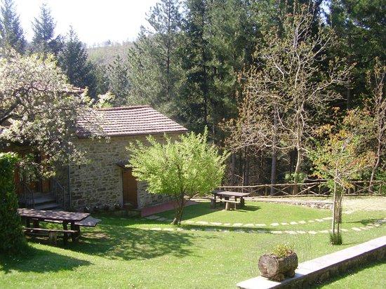 Casale Camalda - Organic Farm: back side of the casale