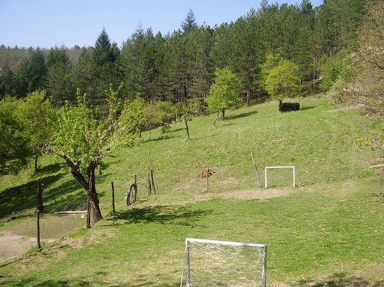 Casale Camalda - Organic Farm: football field
