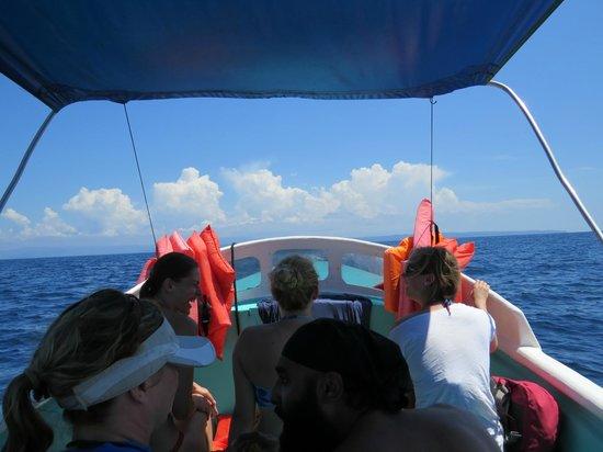 Drake Bay, Costa Rica: Boat trip to Cano Island