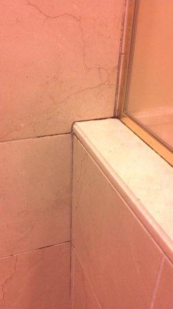The Carlton Hotel: Moldy Bathroom