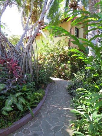 Villas Nicolas : The hotel grounds