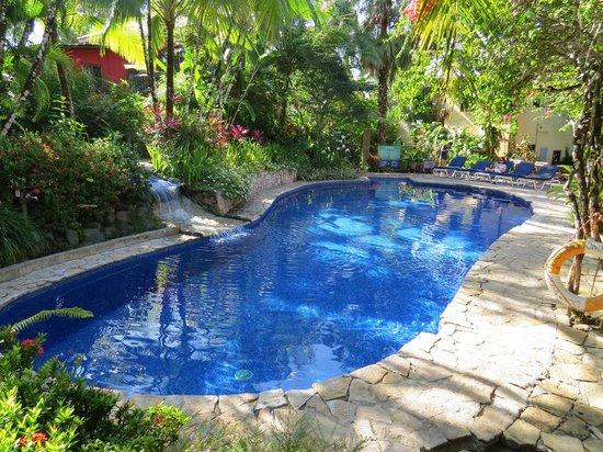Villas Nicolas : The pool.