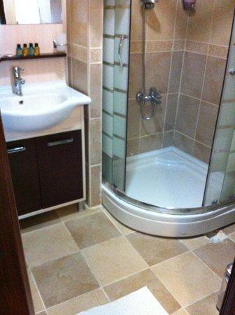 Hotel Promise: bathrrom deluxe room 204