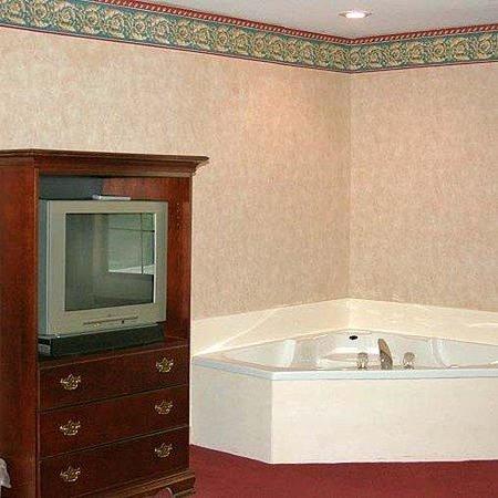Swiss Village Inn Eureka Springs Room