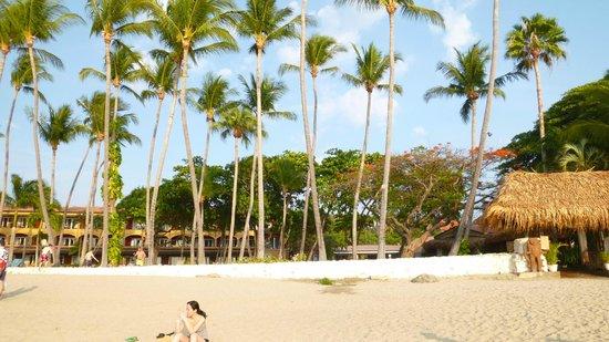 Hotel Tamarindo Diria: Tamarindo Diria