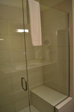 Hotel Parq Central: Shower