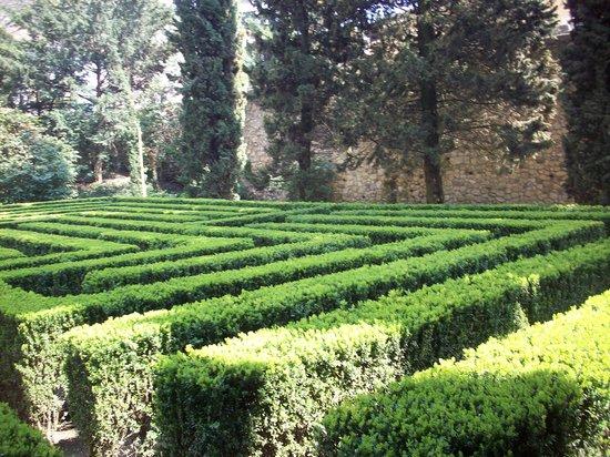 Labirinto picture of palazzo giardino giusti verona for Giardino e palazzo giusti