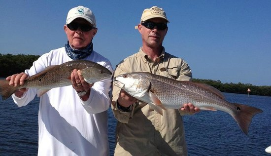 Steady Action Fishing Charters: Redfish