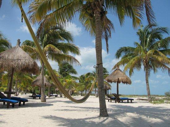 Hotel Villas Delfines: Playa de Villas Delfines