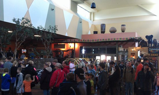 Kalahari Resorts & Conventions: Spring Break check in lines----11:30AM!  Aiiieee!