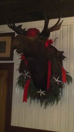 The American Hotel: Our Moose