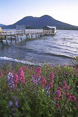 Lakeport English Inn: Beautiful Clear Lake-67 miles around it.