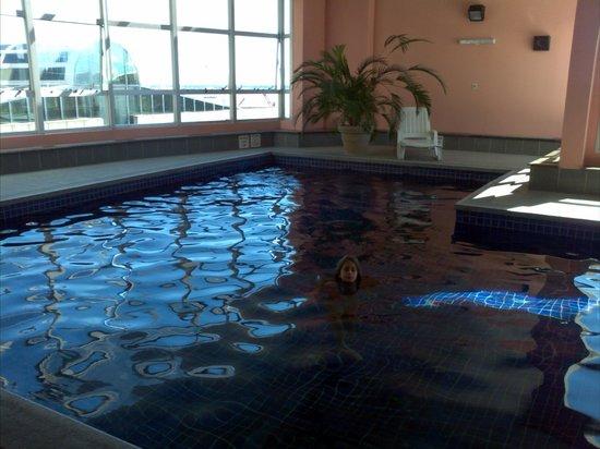 Holiday Inn Montevideo: Piscina
