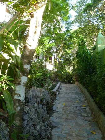 Alargo Villa Residence: Pathway to the house