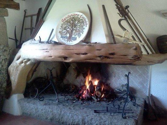 Agriturismo Casteddu : Camino nella sala ristorante