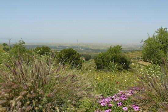 Kasbah Timdaf : panorama