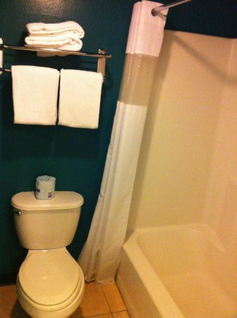 Travelodge Big Bear Lake CA: baño
