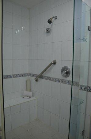 Hard Rock Hotel Riviera Maya: Shower
