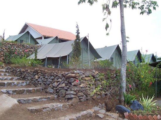 Salatiga, Indonesia: Camp ground of Salib Putih Hostel