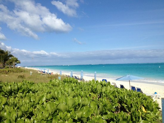 Grace Bay Suites: View from Boardwalk of GBS' Section of Beach