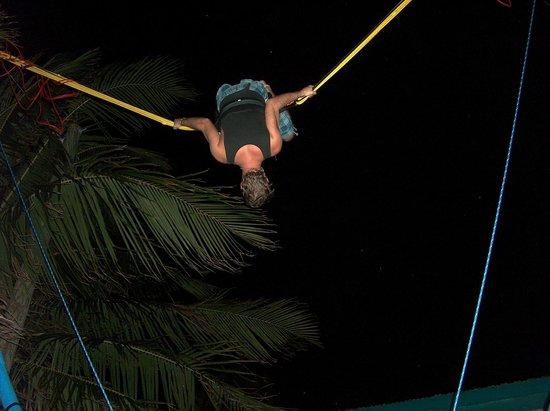 Toucan Jumper Bungee Trampoline: Toucan Jumper @ SandBar