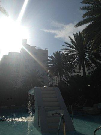 The Raleigh Miami Beach: The hotel.