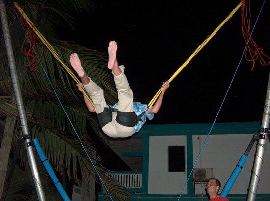 Toucan Jumper Bungee Trampoline: Toucan Jumper @ SanBar