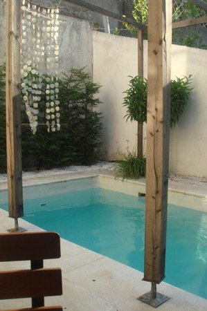 Hotel Saint Charles : The pool in the garden