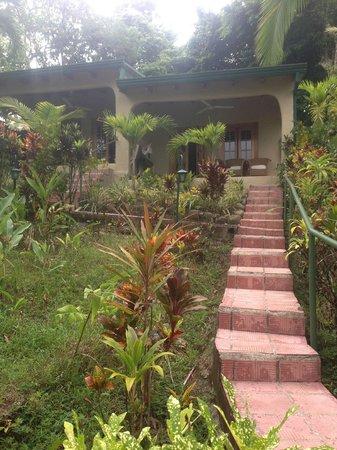 Falls Resort at Manuel Antonio: Walk up to the room