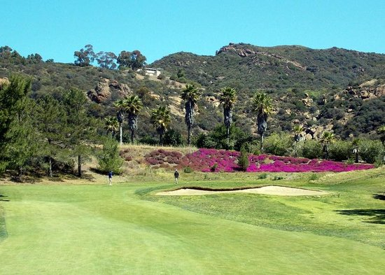 Malibu Country Club : beautiful landscaping