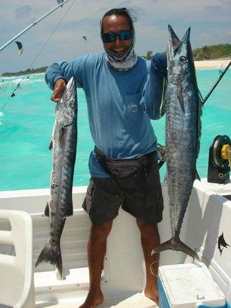 Blue marlin in playa del carmen picture of the rusty for Playa del carmen fishing charters