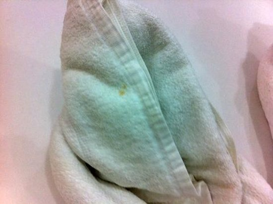 Dumaluan Beach Resort: Dirty towel