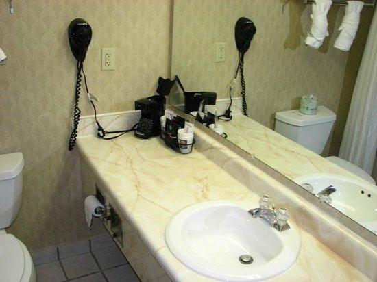 Comfort Inn: The bathroom vanity