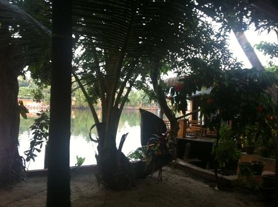 Ayana's Homestay: view