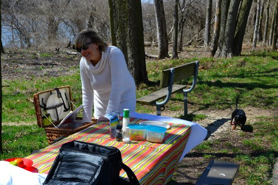 Kankakee River State Park: Setting up the picnic