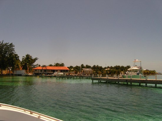 Blue Marlin Beach Resort: the view coming in