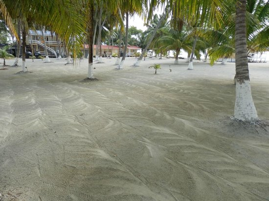 Blue Marlin Beach Resort: decorative raking