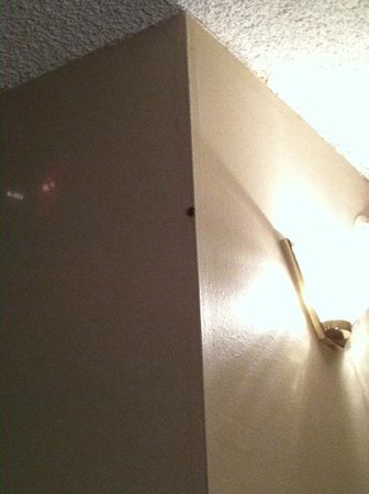City Line Hotel : Bugs in room