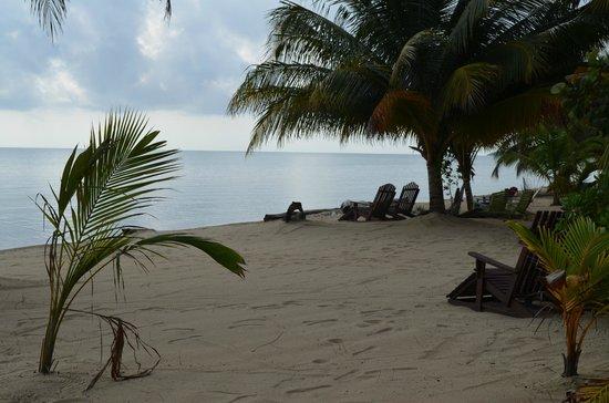 Tipple Tree Beya: Tipple Tree's Beachfront